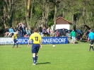 Pokalfinale 2011_15