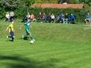 Pokalfinale 2011_22