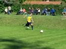 Pokalfinale 2011_23