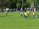 Pokalfinale 2011_44