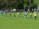 Pokalfinale 2011_45