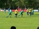 Pokalfinale 2011_55