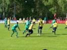 Pokalfinale 2011_56
