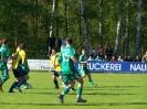 Pokalfinale 2011_64
