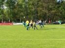Pokalfinale 2011_68