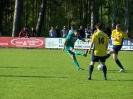 Pokalfinale 2011_73