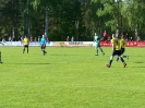 Pokalfinale 2011_80